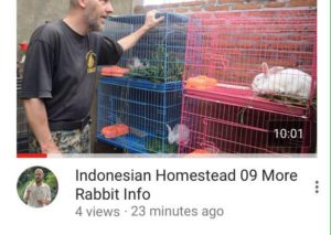 indonesian homestad 09
