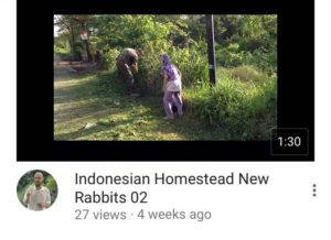 indonesian homestead 06