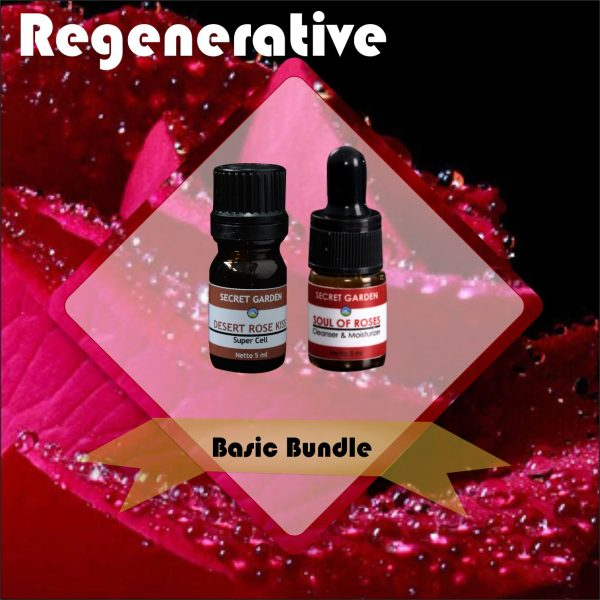 regenerative - basic bundle